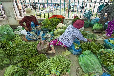 wietnam, delta, mekongu., chau, doc, rzeka, hau, giang, produkcja - 27683698