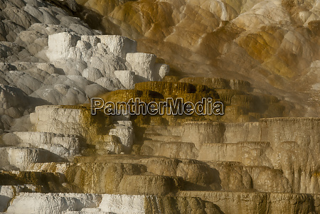 usa wyoming yellowstone national park sunrise