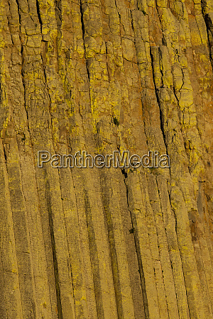 columnar basalt at devils tower national