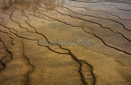 travertine patterns at grand prismatic spring