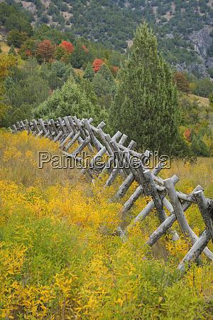 usa, utah, góry, wasatch., ogrodzenie, i, krajobraz, łąki. - 27835530