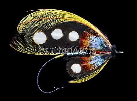 atlantic, salmon, fly, designs, 'western, illusion' - 27887921