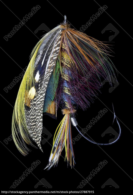 atlantic, salmon, fly, projektuje,