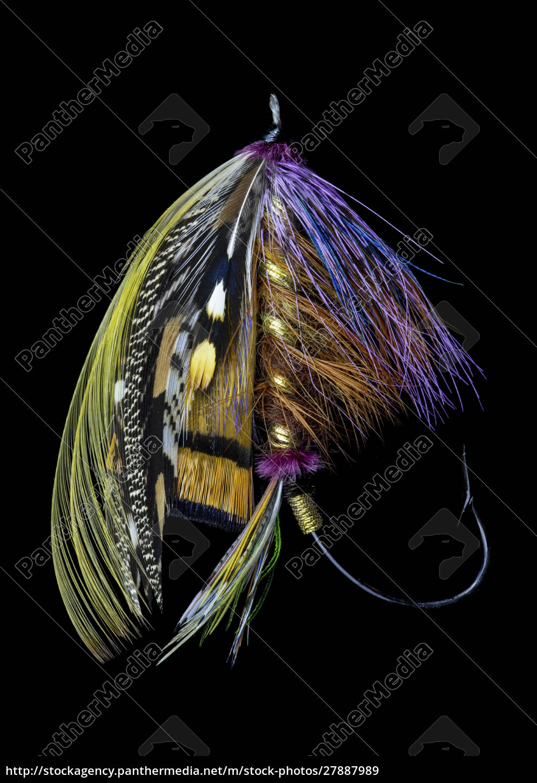 atlantic, salmon, fly, projektuje, wariant,