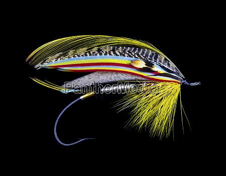 atlantic, salmon, fly, wzory - 27887994