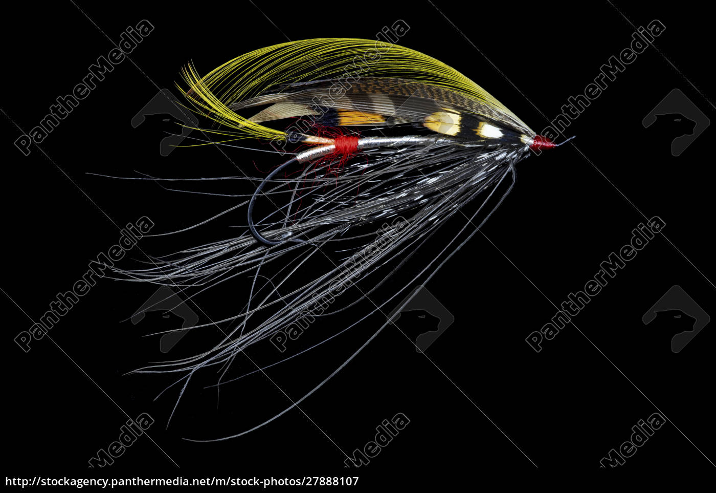 atlantic, salmon, fly, designs, 'pitcroy, fancy' - 27888107