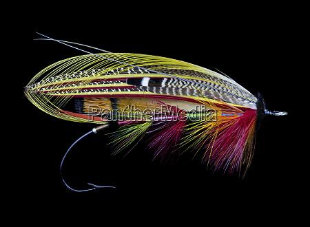 atlantic, salmon, fly, wzory - 27888049