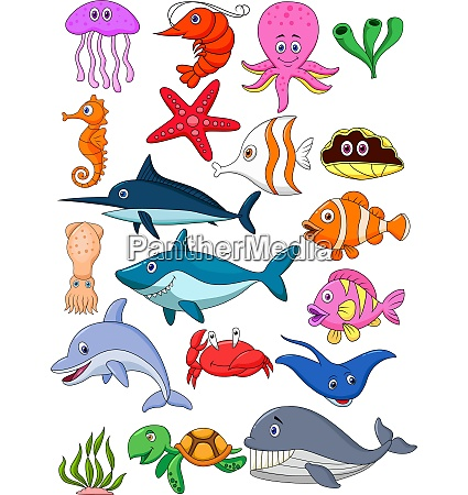 sea, life, cartoon, set - 28008182