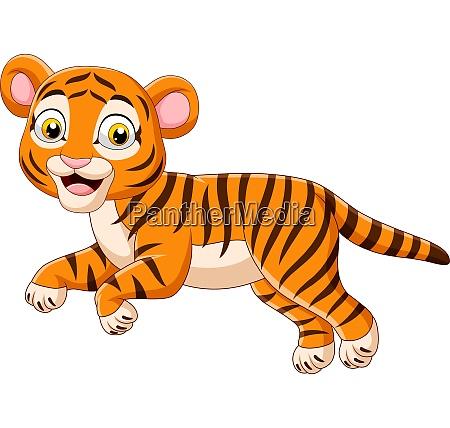 kreskowka skoki dziecko tygrys izolowany na