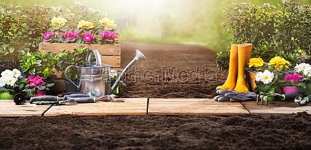 zestaw narzedzi ogrodniczych i kwiaty