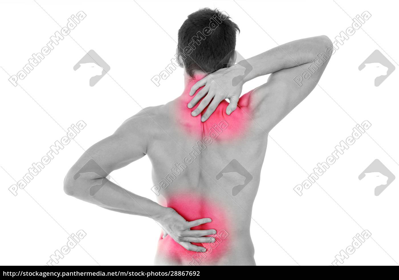 powrót, w, bólu - 28867692