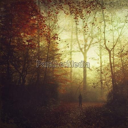 niemcy osoba stojaca na lesnym torze