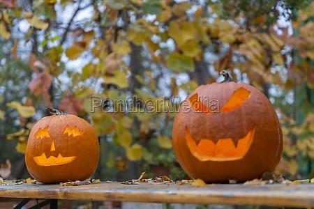 halloweenowa dynia jesienna martwa natura