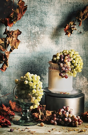winogrona, nadal, żyje - 29887196