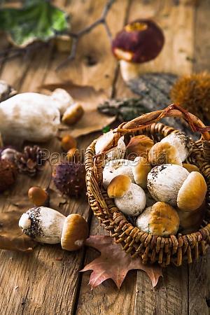 jesienna martwa natura z grzybami