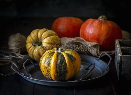 pumpkins - 29895029