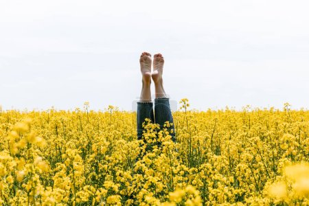 żółte, tło, Niebo, Lato, stopy, dorosły - B381534854