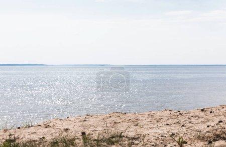 Niebieski, tło, Nikt., Lato, trawa, światło słoneczne - B381537848